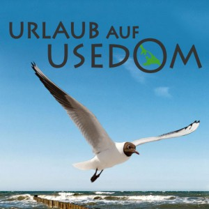 Urlaub auf Usedom Vogel